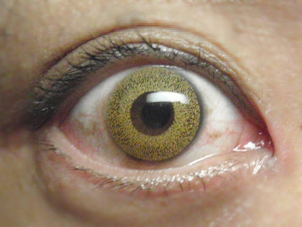 Цветная линза зелёного цвета