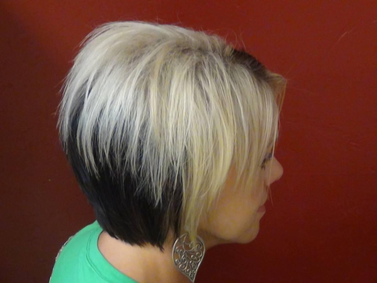 Двойное окрашивание волос: белый и темный (фото)