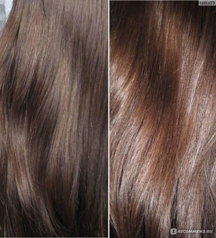 Какой выбрать цвет волос: шоколадный или каштановый? советы стилиста